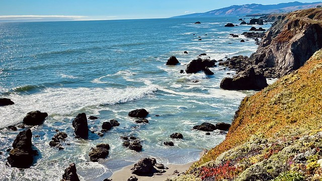 a rocky Pacific Ocean beach with cliffs